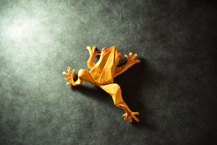 origami-animals-by-gonzalo-calvo-16