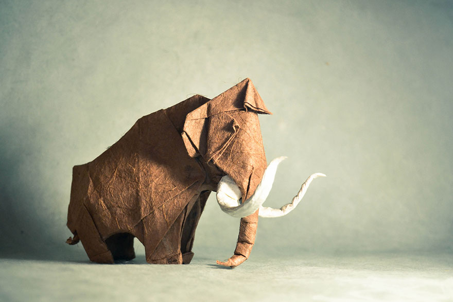 origami-animals-by-gonzalo-calvo-3
