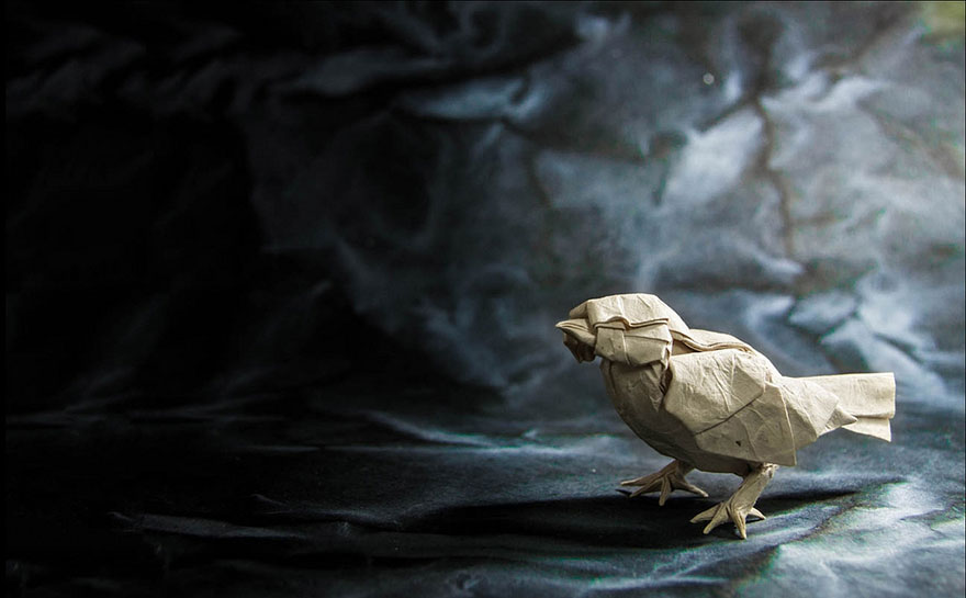 origami-animals-by-gonzalo-calvo-40
