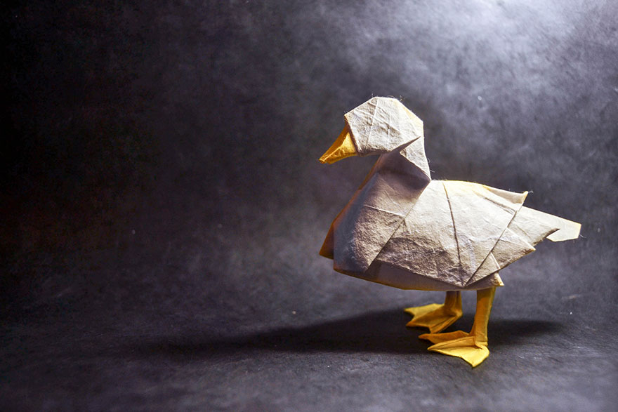 origami-animals-by-gonzalo-calvo-6